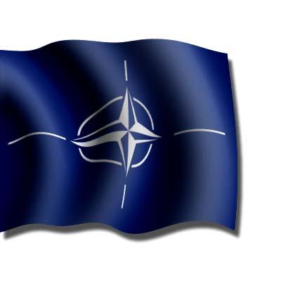 BANDERA ORGANIZACIONES, OTAN
